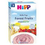 HIPP Бебешка каша горски плод без глутен 6м+